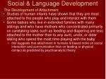 social language development36