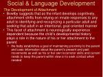 social language development38