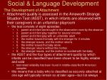 social language development42
