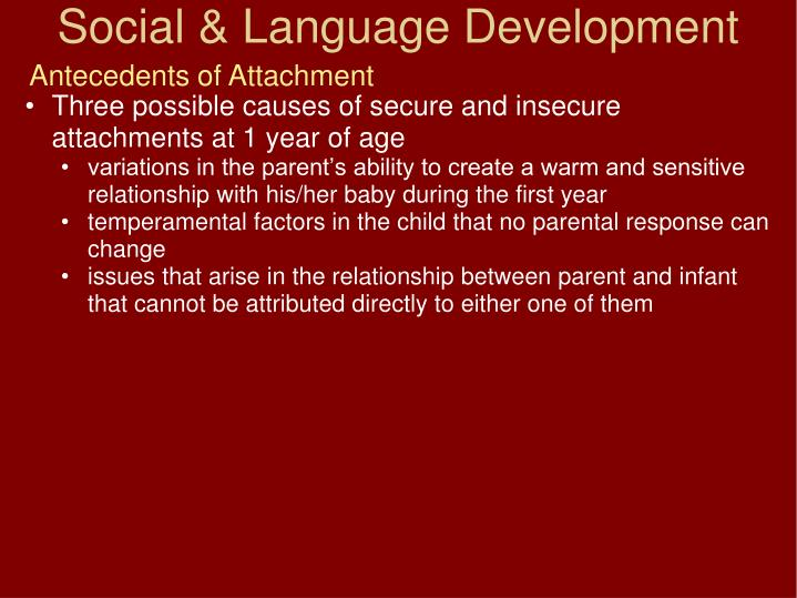 Antecedents of Attachment