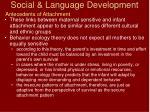 social language development59