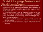social language development68