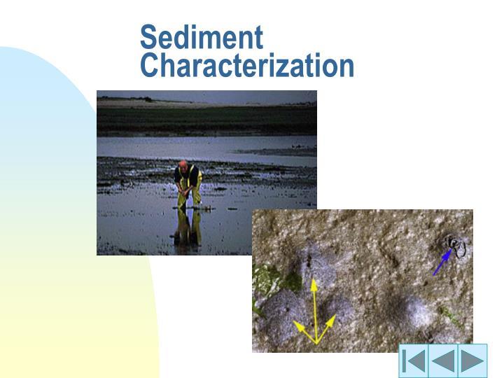 Sediment Characterization