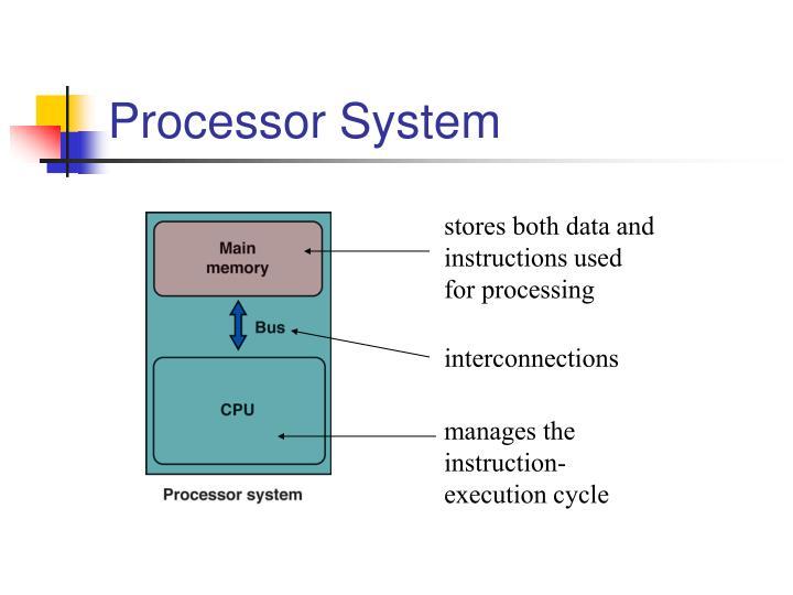 Processor System