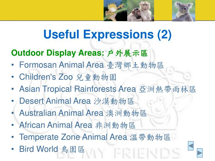 Useful Expressions (2)