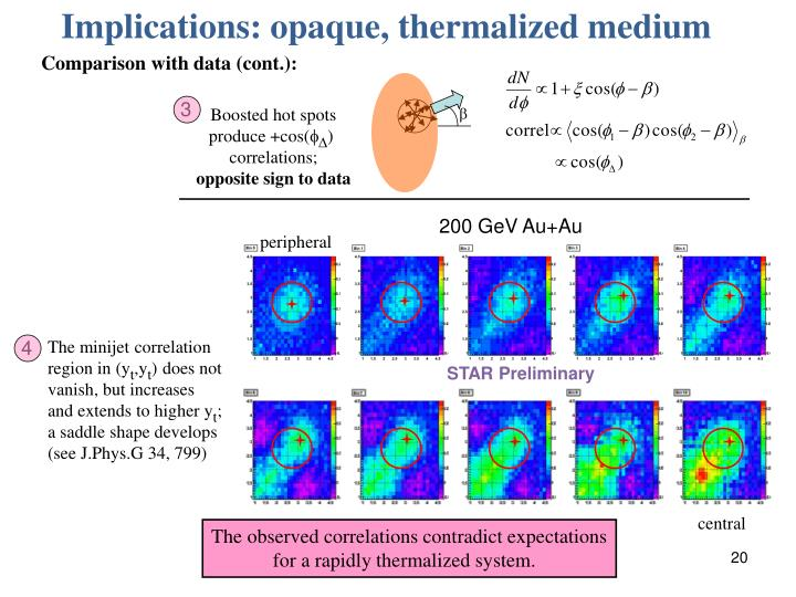 Implications: opaque, thermalized medium