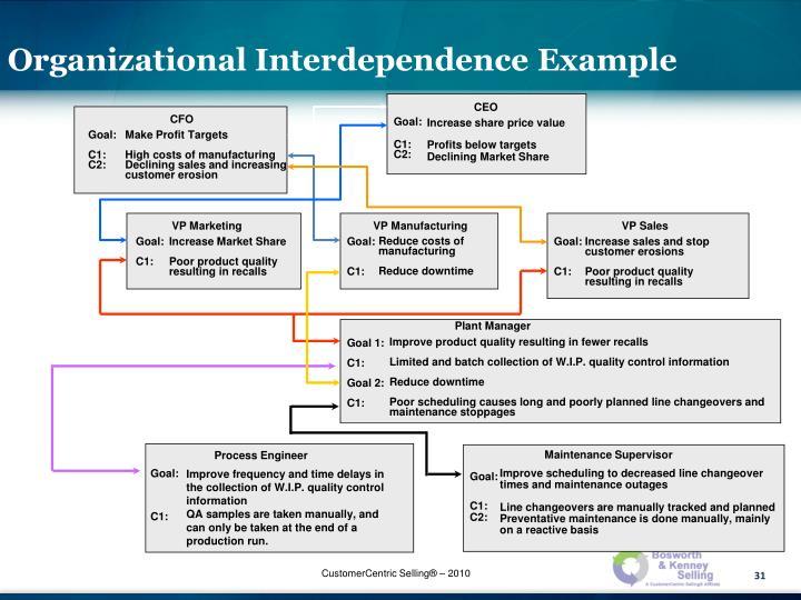 Organizational Interdependence Example