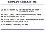 basic adabas call command cmd