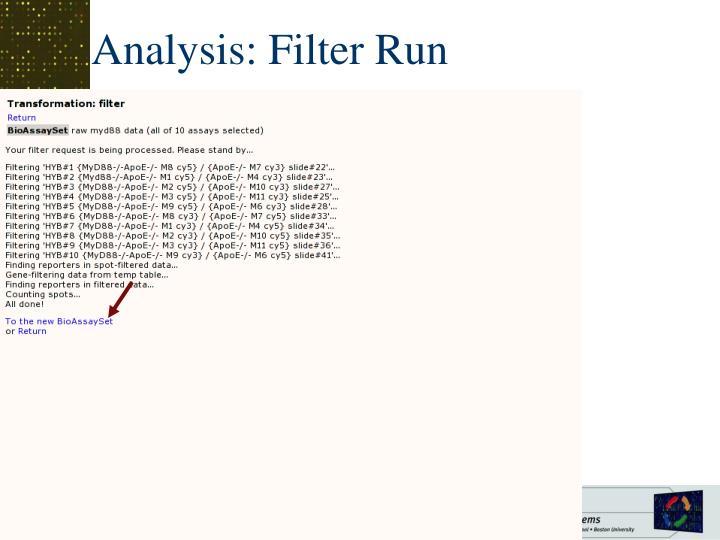 Analysis: Filter Run