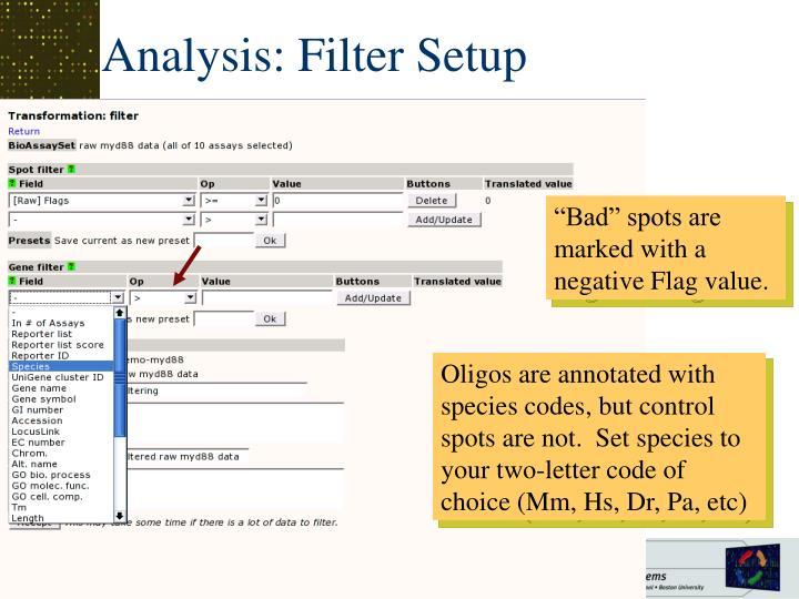Analysis: Filter Setup