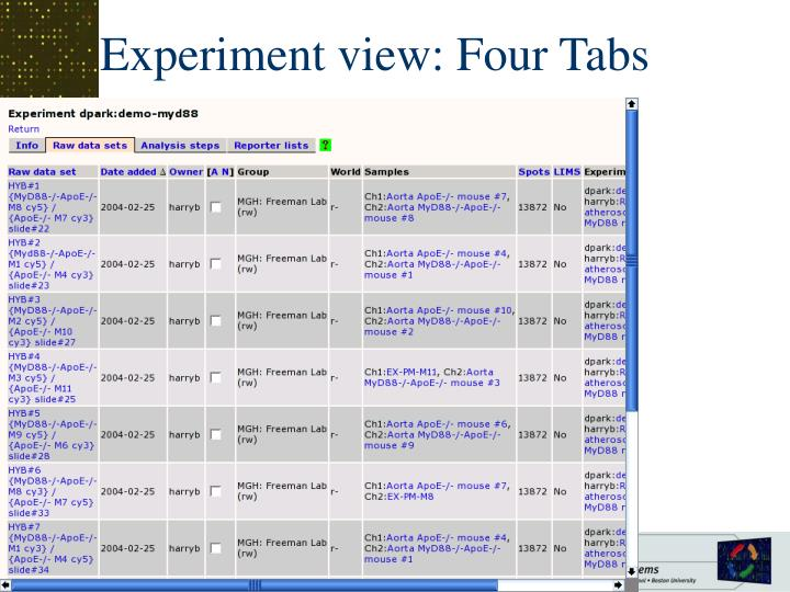 Experiment view: Four Tabs