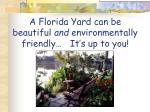 a florida yard can be beautiful and environmentally friendly it s up to you