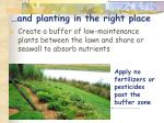 and planting in the right place