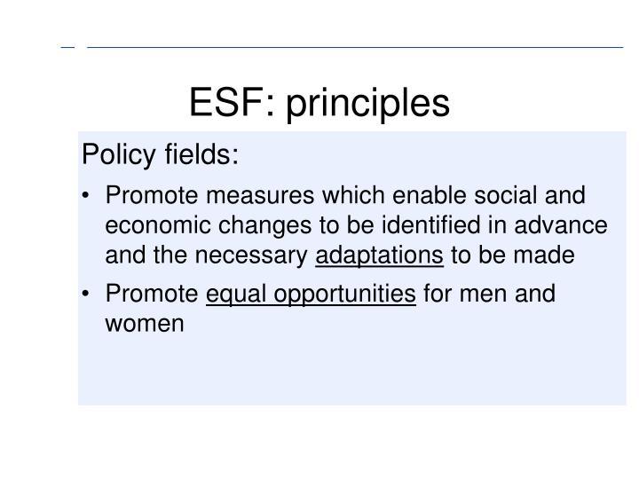 ESF: principles