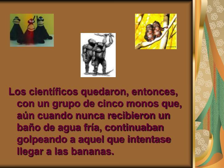 Los científicos quedaron, entonces, con un grupo de cinco monos que, aún cuando nunca recibieron un baño de agua fría, continuaban golpeando a aquel que intentase llegar a las bananas.