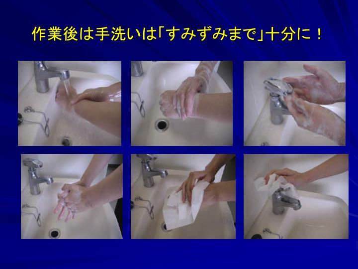 作業後は手洗いは「すみずみまで」十分に!