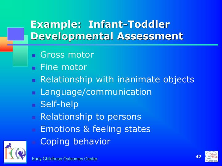 Example:  Infant-Toddler Developmental Assessment