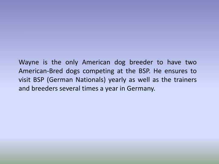 Wayne is the only American dog breeder to have two American-Bred dogs competing at the BSP. He ensur...