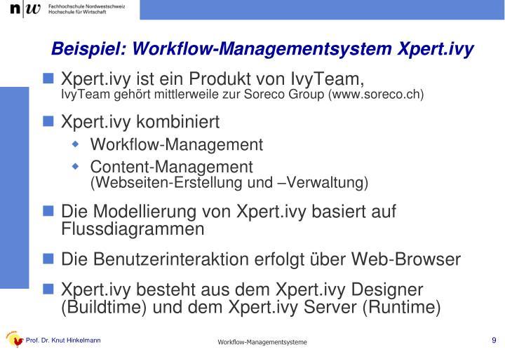 Beispiel: Workflow-Managementsystem Xpert.ivy
