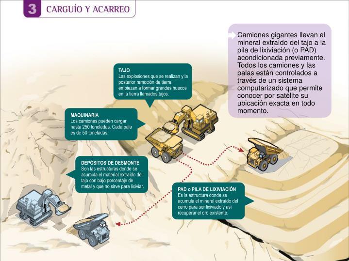 Camiones gigantes llevan el mineral extraído del tajo a la pila de lixiviación (o PAD) acondicionada previamente.