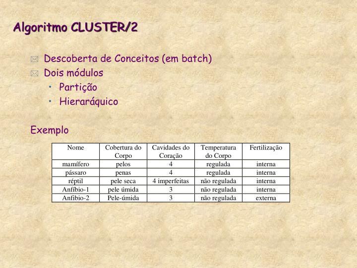 Algoritmo CLUSTER/2