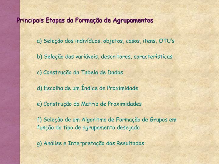 Principais Etapas da Formação de Agrupamentos
