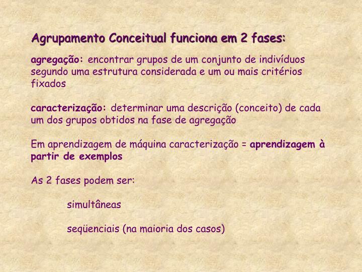 Agrupamento Conceitual funciona em 2 fases: