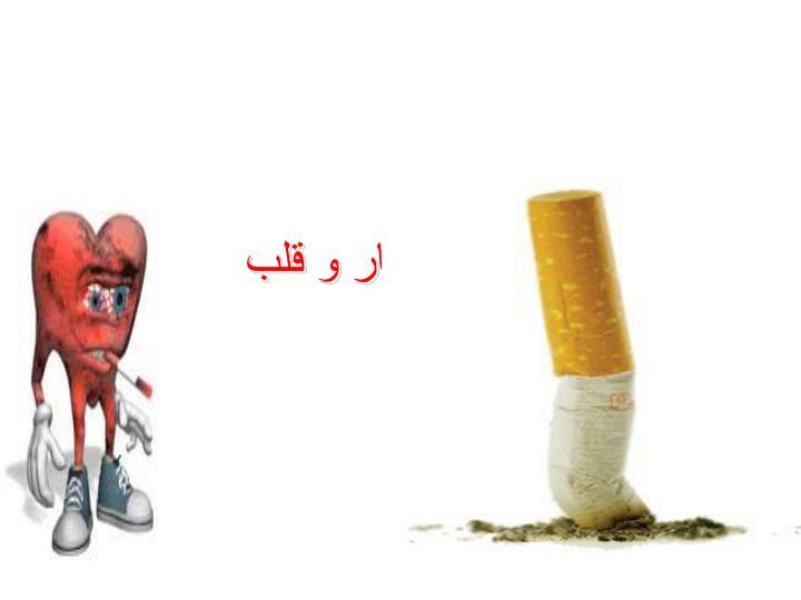 سيگار و قلب