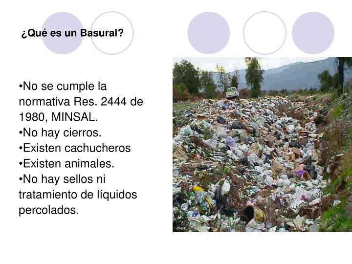 ¿Qué es un Basural?