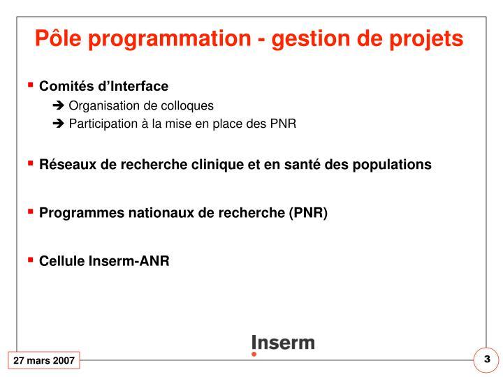 Pôle programmation - gestion de projets