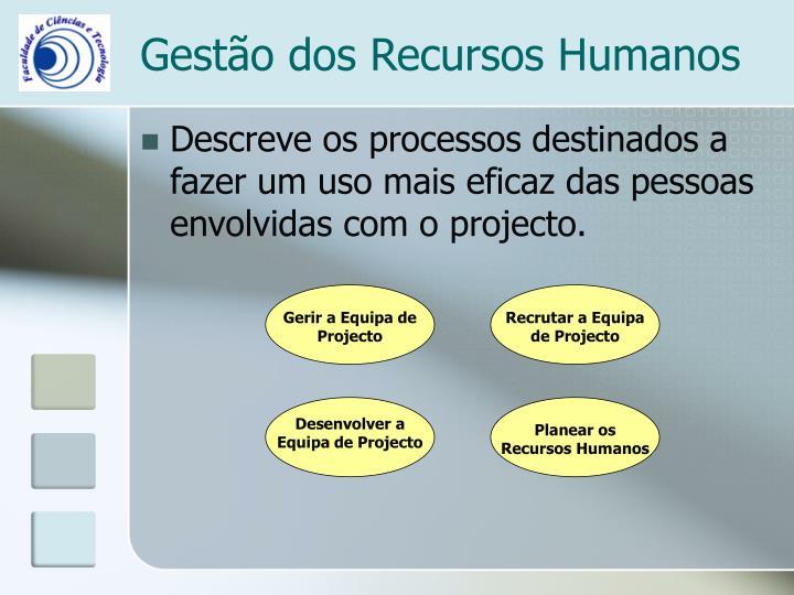 Planear os Recursos Humanos