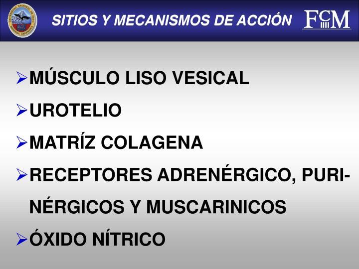 SITIOS Y MECANISMOS DE ACCIÓN