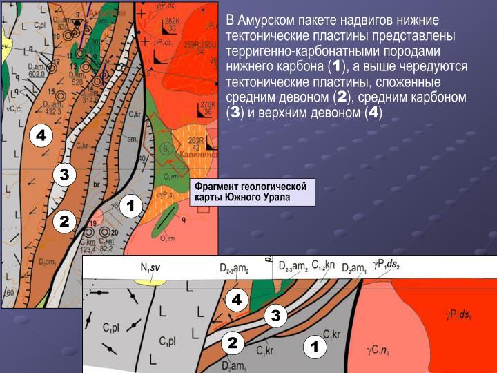 В Амурском пакете надвигов нижние тектонические пластины представлены терригенно-карбонатными породами нижнего карбона (