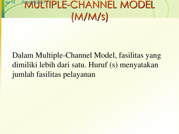 MULTIPLE-CHANNEL MODEL