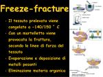 freeze fracture