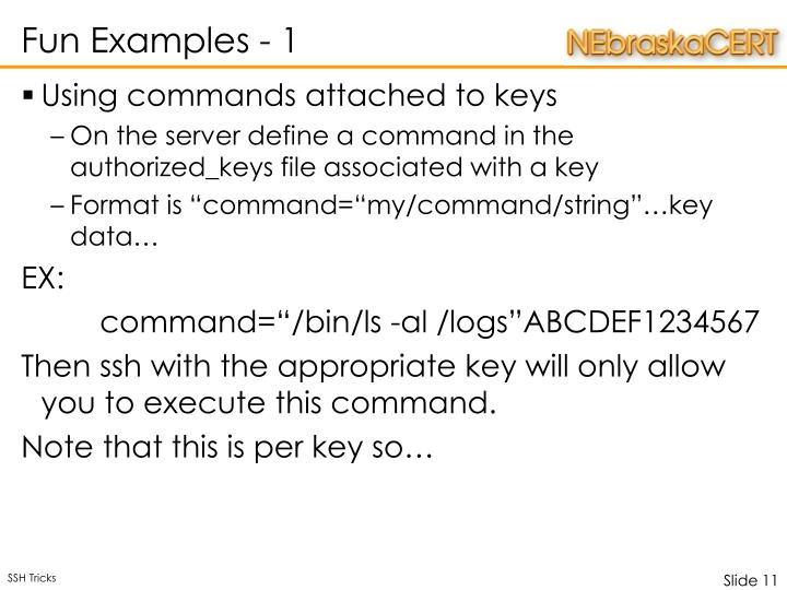 Fun Examples - 1