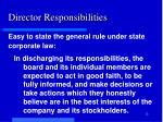 director responsibilities1