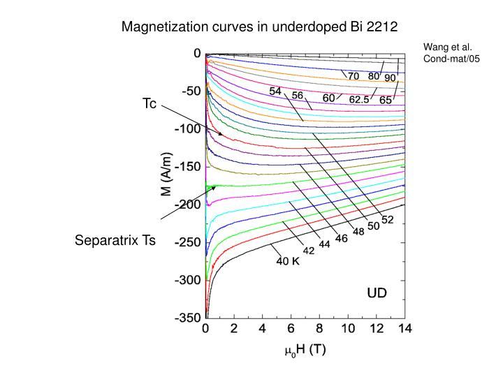 Magnetization curves in underdoped Bi 2212