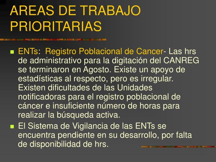 AREAS DE TRABAJO PRIORITARIAS