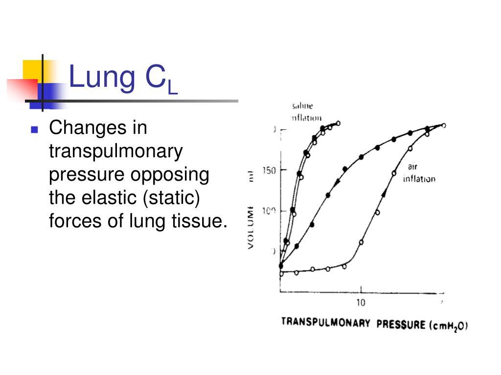 Changes in transpulmonary pressure opposing the elastic (static) forces of lung tissue.