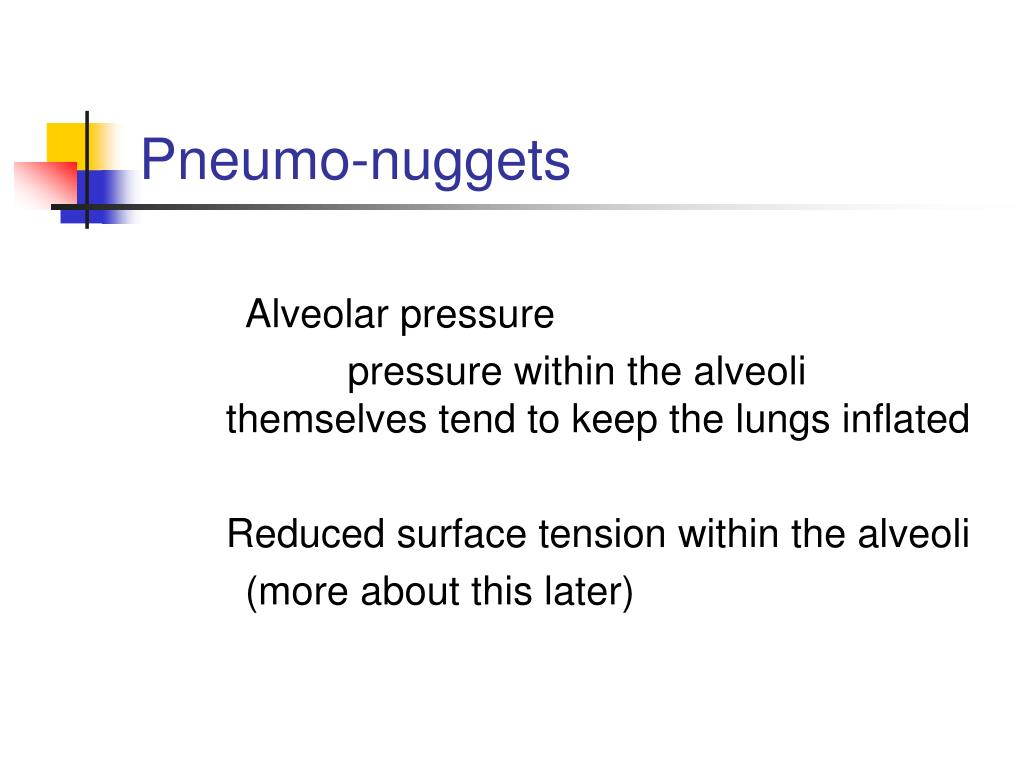 Pneumo-nuggets
