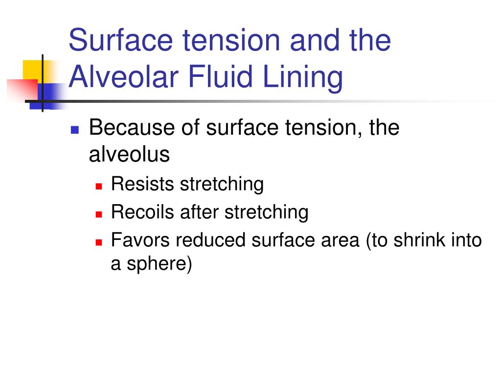 Surface tension and the Alveolar Fluid Lining