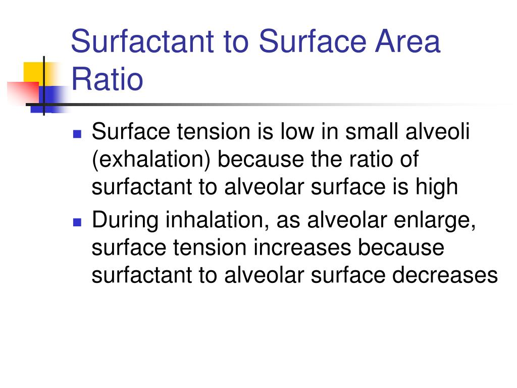 Surfactant to Surface Area Ratio