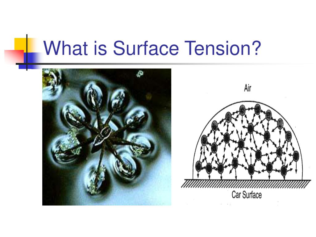 What is Surface Tension?