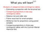 what you will learn4