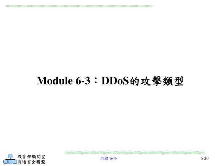 Module 6-3
