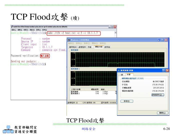 TCP Flood
