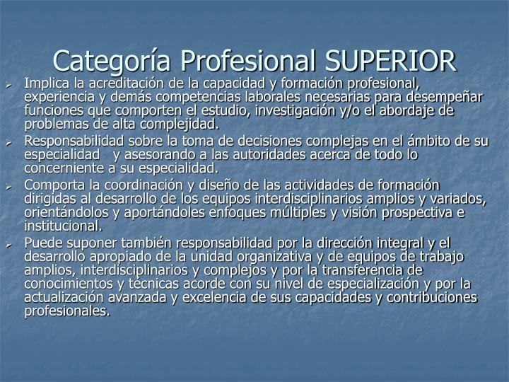 Categoría Profesional SUPERIOR