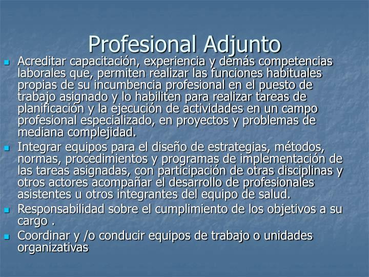 Profesional Adjunto