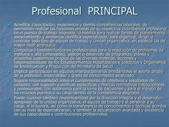 Profesional  PRINCIPAL